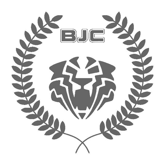 Brave Jaguar Company